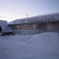 сабетта.январь 2011г.