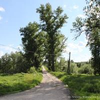 Парк усадьбы  Сабуровых в Воспушке
