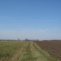 Путь к ферме
