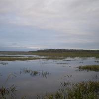 озеро Малый Уват