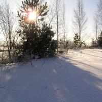 Рефтинский. Мороз и солнце