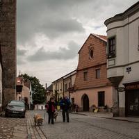 Улица Палачкова