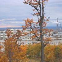 Осенний Амурск