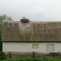 Косари,аист на крыше-счастье под крышей)