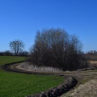 Три поля