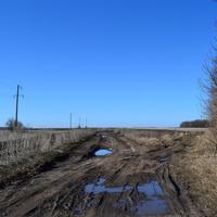 Дорога весной