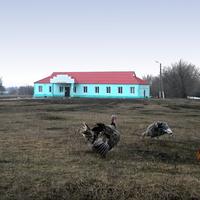 Облик села Шахово