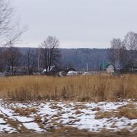 Деревня Тростники