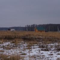 Лесной край-2