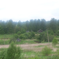 Сиротино  Валдайского  района, май 2010 г.