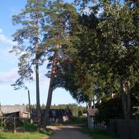 деревня Ракитино