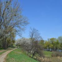 Озеро под фермой.