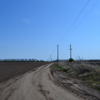 Дорога в Яцки