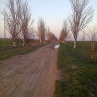 Дорога на Косаківку