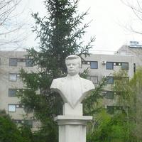 г.Оренбург, бюст С.Н.Фёдорову МНТК <Микрохирургия глаза>