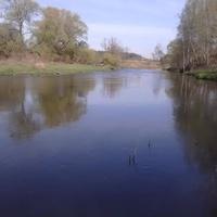 Река Истра в деревне Ивановское. Май 2015 г.