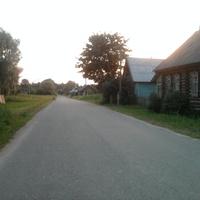 д.Горелуша.Лето 2010.Асфальт только в деревне.