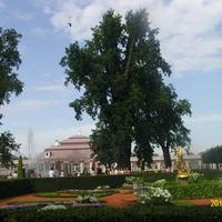 """Фонтан-колокол со статуей """"Фавн с козлёнком"""" в саду дворца Монплезир Нижнего парка"""