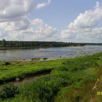 На берегу реки Великая в Выбутах
