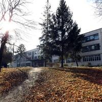 Весёлая Лопань. Школа