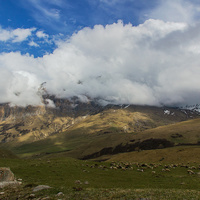 Высокогорное пасбище в районе Верх.Балкарии
