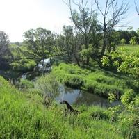 Река Роска около Ержино.