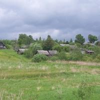Деревня  Селилово Валдайского  района, май 2010 г.