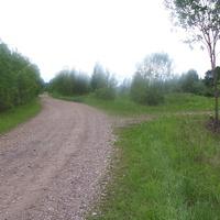 Дорога  из  деревни  Высокуша в  Милятино, май 2010 г.
