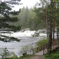 Природа Лангинкоски