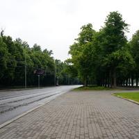 Улица Косыгина