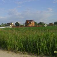 Юго-западная часть деревни Тархановская