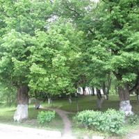 Беседский сельскохозяйственный техникум, усадебный парк