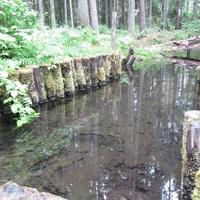 От родника святая вода поступает по ручью в купель