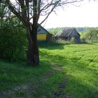 Деревня Сыр-Липки