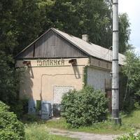 Маслова Пристань. Станция Топлинка.