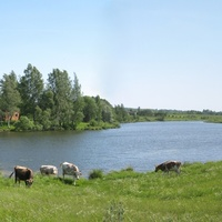 Фенино река Гастижа