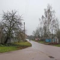 с. Красное. Сельская улица.