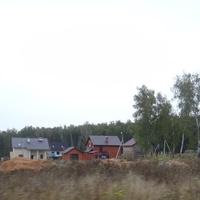 Лес по периметру