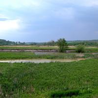 Природа села Новая Таволжанка