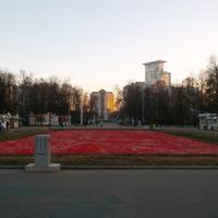 ноябрь2014 Сокольники