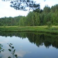 река кестромка село ильинское
