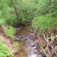 Жуков  ручей  недалеко  от  деревни  Лутовёнка