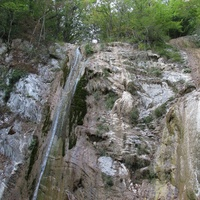 Природа поселка Новомихайловский