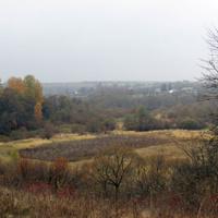 Вид на Петровское.