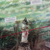 В зале птиц смешанных и хвойных лесов музея «Мир птиц национального парка Мещёра. Пуночка и большая синица