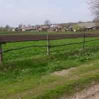 Огороди