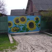 Ворота соняшники:)