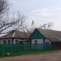 Подвір'я з прапором України