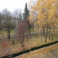 ноябрь 2015 года, осень