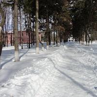 Дослидницкое, 5 февраля 2015 года